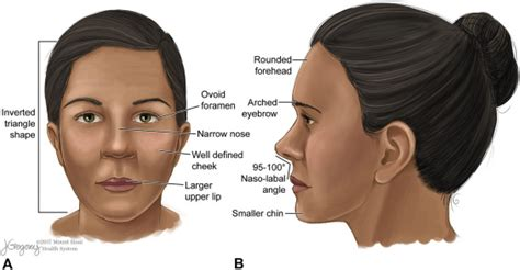 Medical and aesthetic procedural dermatology