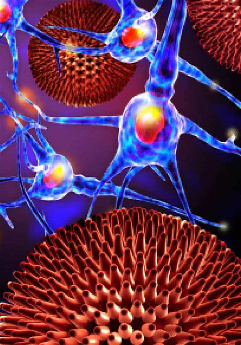 Pathophysiology of Amyotrophic Lateral Sclerosis | IntechOpen
