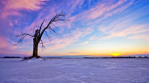 Winter Wallpapers - Wallpapers   DesiComments